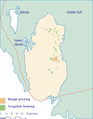 The geography of qatar grazing and farm distribution in qatar publicscrutiny Images